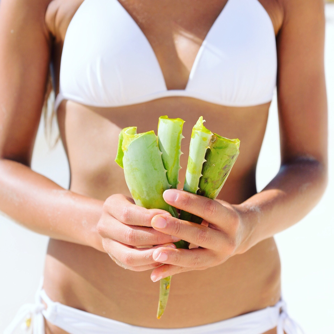 Aloe Vera - woman showing plant for skin care treatment using Aloes. Can be used as natural medicine or remedy against sunburn.